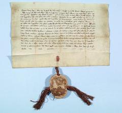 Stadtverlegungsurkunde vom 25. Mai 1292