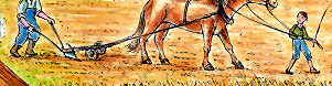 Ein Pferd zieht einen Pflug